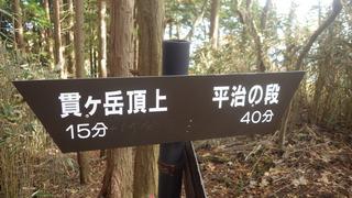 RIMG5729.JPG