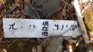 RIMG6994.JPG
