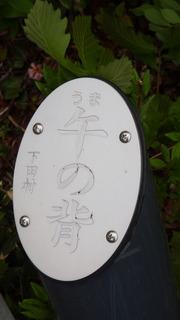 RIMG7750.JPG