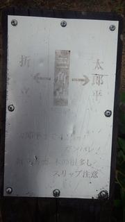 RIMG8329.JPG