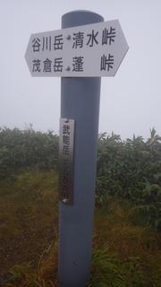 RIMG8930.JPG